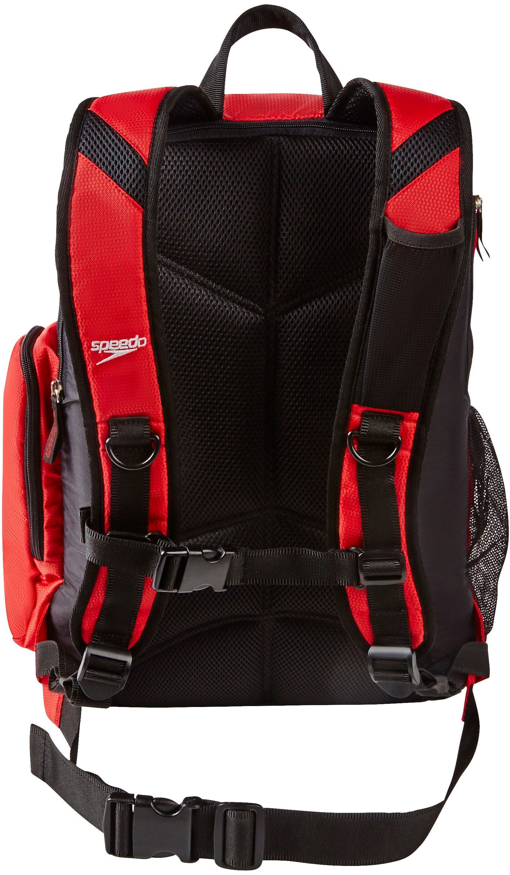 e6cb4c51ad48 speedo Teamster Backpack L red at Addnature.co.uk